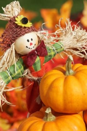 Egyszerű, de csodaszép őszi dekorációk: így készítsd el őket!, Bien.hu