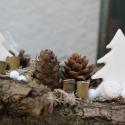 Havas fenyők - karácsonyi asztaldísz mécsessel, Dekoráció, Otthon, lakberendezés, Ünnepi dekoráció, Gyertya, mécses, gyertyatartó, Újrahasznosított alapanyagból készült termékek, Virágkötés, Az év végéhez közeledve, ahogy a természet egyre inkább aludni tér még inkább vágyunk valami szépre..., Meska