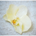 Orchidea hajdísz, Esküvő, Ruha, divat, cipő, Hajdísz, ruhadísz, Hajbavaló, Ékszerkészítés, Ezt a könnyed mégis elegáns orchidea hajdíszt nem csak menyasszonyok számára készítettem, hanem bár..., Meska