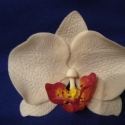 phalaenosis (lepke) orchidea virág fehér, Dekoráció, Otthon, lakberendezés, Dísz, , Meska