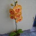 agyag orchidea - phalaenopsis narancssárga, Dekoráció, Otthon, lakberendezés, Dísz, Festett tárgyak, Kerámia, orchidea agyagból és drótból, olajfestékkel színezve. Nem törékeny, és nem kell locsolni!   jelenle..., Meska