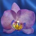 phalaenosis (lepke) orchidea virág -  lila, Dekoráció, Otthon, lakberendezés, Dísz, Kaspó, virágtartó, váza, korsó, cserép, Kerámia, Mindenmás, phalaenopsis (lepke) orchidea virág agyagból, lila színben  orchidea 9 cm széles, szár 7 cm (hajlék..., Meska