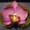 phalaenosis (lepke) orchidea virág termésben - lila, Dekoráció, Otthon, lakberendezés, Dísz, Kaspó, virágtartó, váza, korsó, cserép, Kerámia, Mindenmás, phalaenopsis (lepke) orchidea virág agyagból, lila színben, natúr színű badam termésben  orchidea 9..., Meska