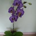 agyag orchidea - phalaenopsis lila, Dekoráció, Otthon, lakberendezés, Dísz, Festett tárgyak, Kerámia, orchidea agyagból és drótból, olajfestékkel színezve. Nem törékeny, és nem kell locsolni!   jelenle..., Meska