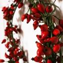 őszi csoda, Otthon, lakberendezés, Dekoráció, Virágkötés, Ezt a tűzvörös csipkebogyó koszorút, őszi beköszöntőként készítettem. A saját ajtómat is ilyen díszí..., Meska