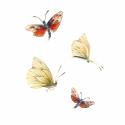 Pillangók - Print (Ceruza), Képzőművészet , Dekoráció, Festmény, Kép, Festészet, Fotó, grafika, rajz, illusztráció, Az eredeti illusztráció ceruzával készült, a print jó minőségű, A/4-es, 250 g/m2-es papírra van nyo..., Meska