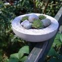 Beton kövirózsás tál, Dekoráció, Otthon, lakberendezés, Dísz, Kaspó, virágtartó, váza, korsó, cserép, Kőfaragás, Virágkötés, Betonból készült, dekoratív kövirózsás tál.  Átmérő: 14 cm Magasság:4 cm  Súlya kb. 1,5 kg növények..., Meska