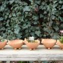 Sünike kaktusztál, Otthon, lakberendezés, Dekoráció, Kerti dísz, Kaspó, virágtartó, váza, korsó, cserép, Kerámia, Vörösre égő agyagból készült  virágtartó edény. Méretei: 6cm magas, a hossza 12cm., Meska