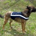 Kutya láthatósági mellény / Famer, Mindenmás, Ruha, divat, cipő, Varrás, Nyakrész mérete (tépőzáras): 56-66 cm Hasrést mérete (tépőzáras) : 52-68 cm  Személyesen átvehető K..., Meska