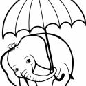 WC-elefánt - falmatrica, Dekoráció, Otthon, lakberendezés, Falmatrica, Fotó, grafika, rajz, illusztráció, Ez a dekorációs matrica egy elázástól tartó elefántról készült. Wc külső, vagy belső fedelére javas..., Meska