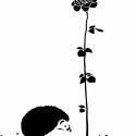 Sün és rózsa tövis nélkül falmatrica, Dekoráció, Otthon, lakberendezés, Falmatrica, Falikép, Fotó, grafika, rajz, illusztráció, A sün elfilozofál az élet nagy kérdéseiről: - Van bennünk valami közös? És ha igen, létezhet-e sün t..., Meska