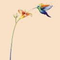Tűzliliom és kolibri, hátán pici lánnyal falmatrica, Dekoráció, Baba-mama-gyerek, Gyerekszoba, Falmatrica, Fotó, grafika, rajz, illusztráció, A képet egy egészen pici lány ihlette, aki ha örül, úgy jár keze-lába, mint a kolibri szárnyai.   Tű..., Meska