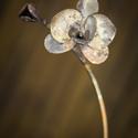 Orchidea, Dekoráció, Otthon, lakberendezés, Dísz, Kaspó, virágtartó, váza, korsó, cserép, Fémmegmunkálás, Lepj meg valakit egy igazán egyedi virággal! Orchidea rézből! Magassága: 30 cm., Meska