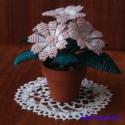 Cinerária gyöngyből barack színben, Dekoráció, Otthon, lakberendezés, Dísz, Gyöngyfűzés, Virágkötés, 5 cm átmérőjű cserépbe készítettem ezt a nagyon mutatós virágot. 5 szál -5 cm átmérőjű-  virágból á..., Meska