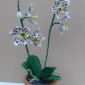 Fehér orchidea cserépben, asztali dísz, Dekoráció, Otthon, lakberendezés, Dísz, Kaspó, virágtartó, váza, korsó, cserép, Gyöngyfűzés, A virágot 2 mm-es fehér és sötét bordó, sárga valamint zöld cseh kásagyöngyből fűztem. A virágokat ..., Meska