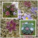 7 db  Lila Árnyalatú Mázas Kerámia Virág, Dekoráció, Otthon, lakberendezés, Kaspó, virágtartó, váza, korsó, cserép, Kerti dísz, Kerámia, Virágkötés,  Szedj egy csokrot a virágos kertemből! Állítsd össze a saját csokrod! Tedd kosárba valamelyik össz..., Meska