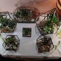 Dedokaéder, Florárium, terrárium, Otthon, lakberendezés, Kaspó, virágtartó, váza, korsó, cserép, Üvegművészet, Tiffany technikával készített florárium. 11 db ötszögletű üveglapból áll.  Egy ötszögletű lap nincs..., Meska