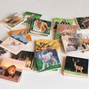 Memóriajáték - vadon élő állatokkal, Játék, Baba-mama-gyerek, Készségfejlesztő játék, Társasjáték, Decoupage, szalvétatechnika, 32 db 5*5 cm-es falapokra ragasztott színes papírlap.  Bármely témakörben lehetséges memóriajáték k..., Meska