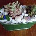 mini sziklakert 2, Dekoráció, Otthon, lakberendezés, Dísz, Kaspó, virágtartó, váza, korsó, cserép, Festett tárgyak, Mindenmás, Zöld bádogedényt folyami kavicsokkal töltöttem fel, tetejükre fehér márványkavics került. Közéjük é..., Meska