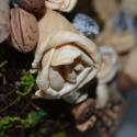 Koszorú a természetből, Dekoráció, Otthon, lakberendezés, Virágkötés, Koszorú a természetes anyagok kedvelőinek!  25 cm átmérőjű, drótvázas vesszőkoszorú, szárított moháv..., Meska
