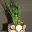 Virgkaspó, Dekoráció, Otthon, lakberendezés, Kaspó, virágtartó, váza, korsó, cserép, Famegmunkálás, 10cm átmérőjű, 8 cm magas virágkaspó fakorongokkal kirakva, Meska