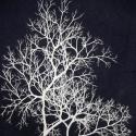 Kék farmertáska fehér fákkal, Táska, Válltáska, oldaltáska, Mindenmás, Varrás, Erős sötétkék farmerből varrtam ezt a táskát. A fehér minta saját tervezésű és szitanyomással vitte..., Meska
