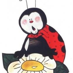 ladybug67