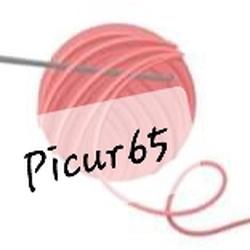 picur65