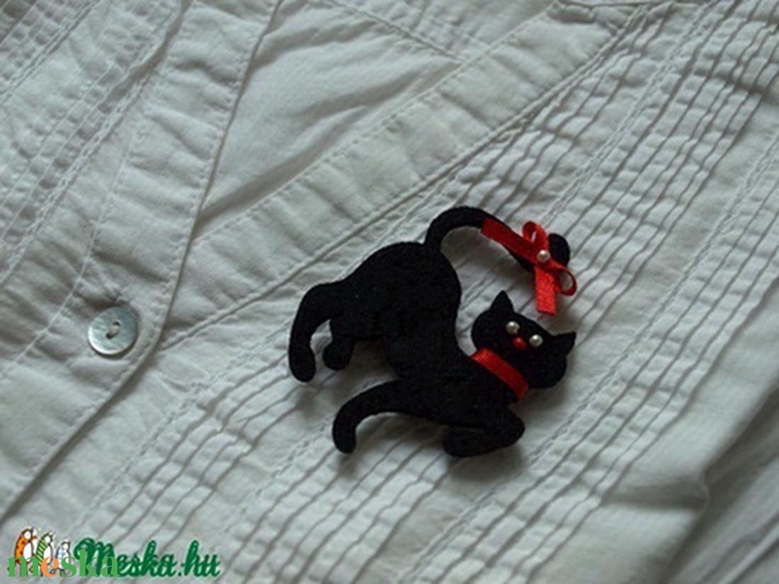 Fekete Macska Jatek