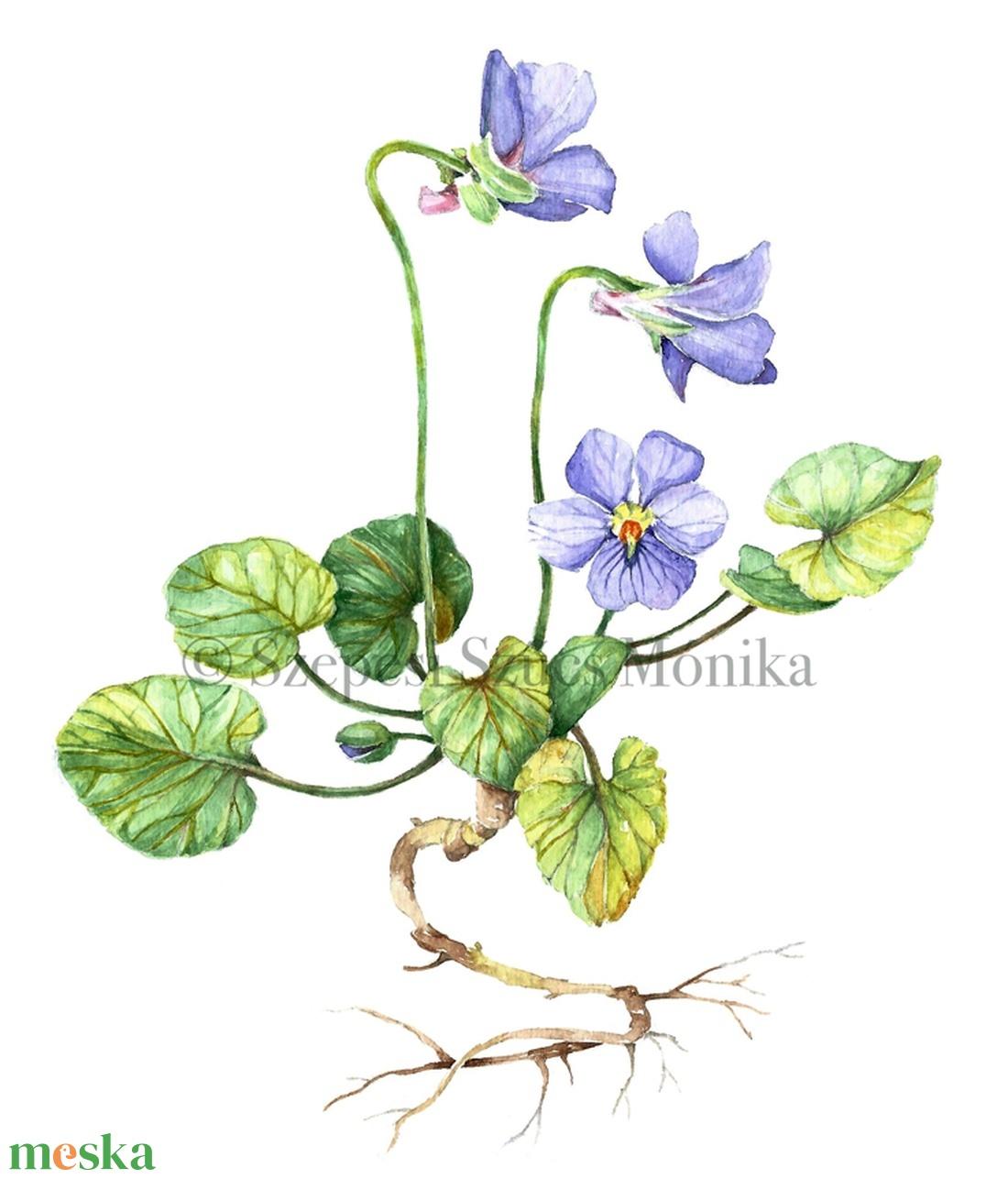 Ibolya - Print (Akvarell) - művészet - művészi nyomat - Meska.hu