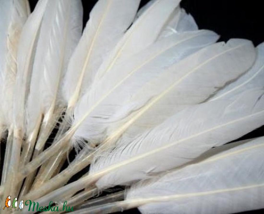Dekorációs indián toll-8 (10 db) - fehér (csimbo) - Meska.hu