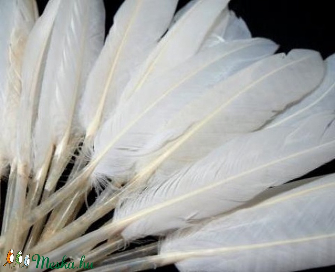 Dekorációs indián toll-8 (10 db) - fehér - Meska.hu
