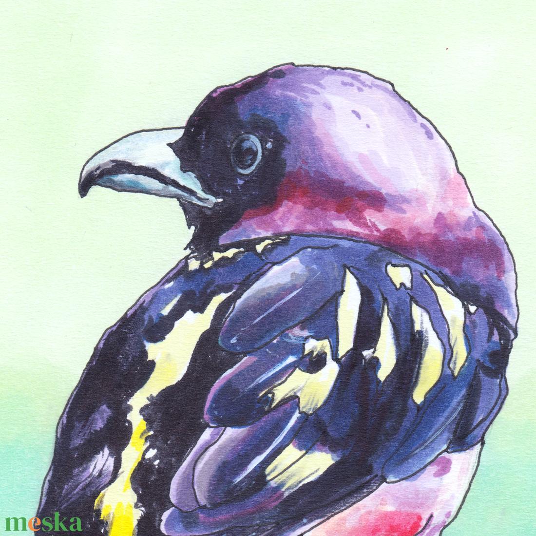 Rózsásfejű ricsóka (madár) - ecsetfilc festmény (nyomat) - művészet - festmény - akvarell - Meska.hu