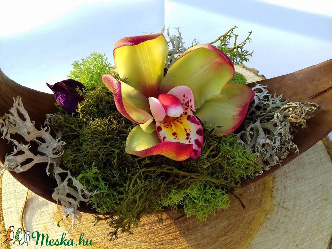Cymbidium agyagvirág orchidea csónakban (Lakasekszer) - Meska.hu