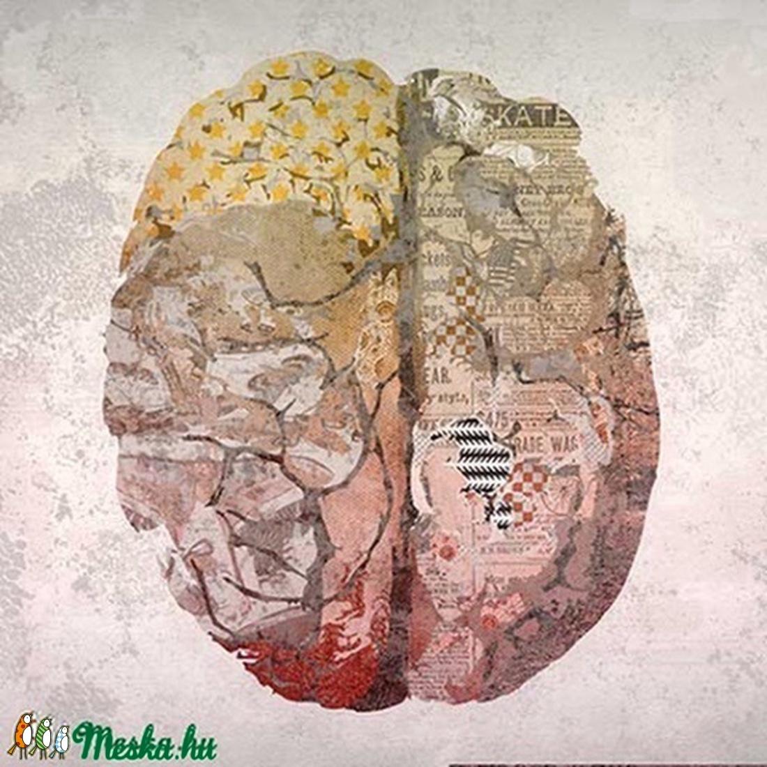 Csodálatos anatómia - Agy - illusztráció (schalleszter) - Meska.hu