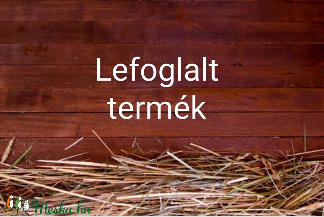 Lefoglalt termék - otthon & lakás - dekoráció - Meska.hu