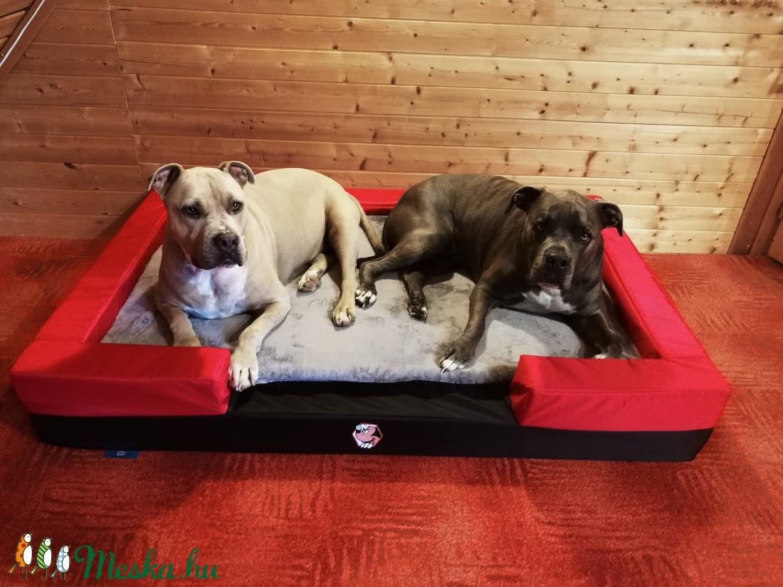 Új, egyedi, minőségi, vízálló, lehúzható és mosható XXL kutyafekhely, kutyakanapé - otthon & lakás - kisállatoknak - kutyáknak - Meska.hu