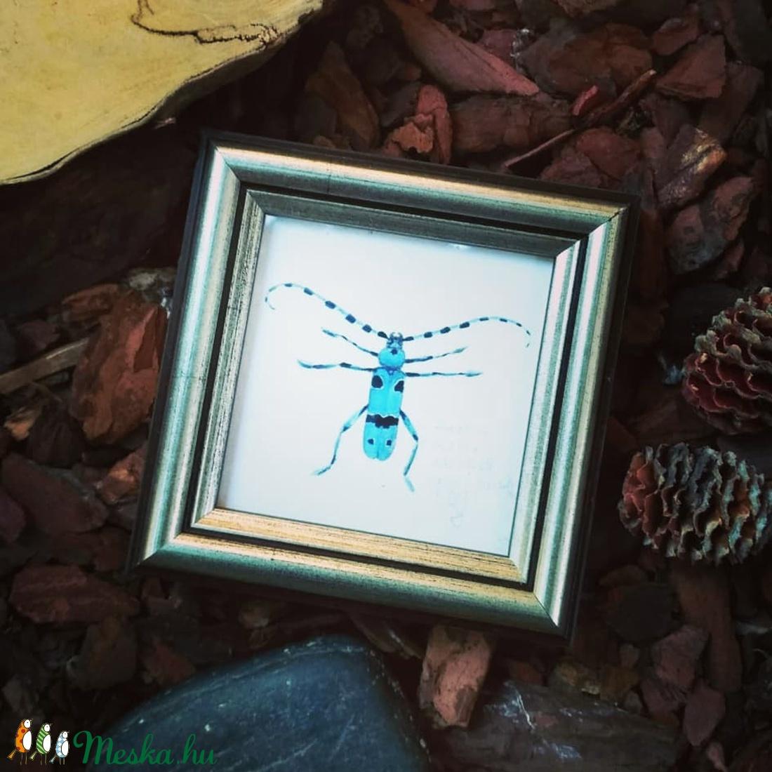 Havasi cincér - akvarell festményről készült, keretezett művészi mininyomat (szolnokiagnes) - Meska.hu