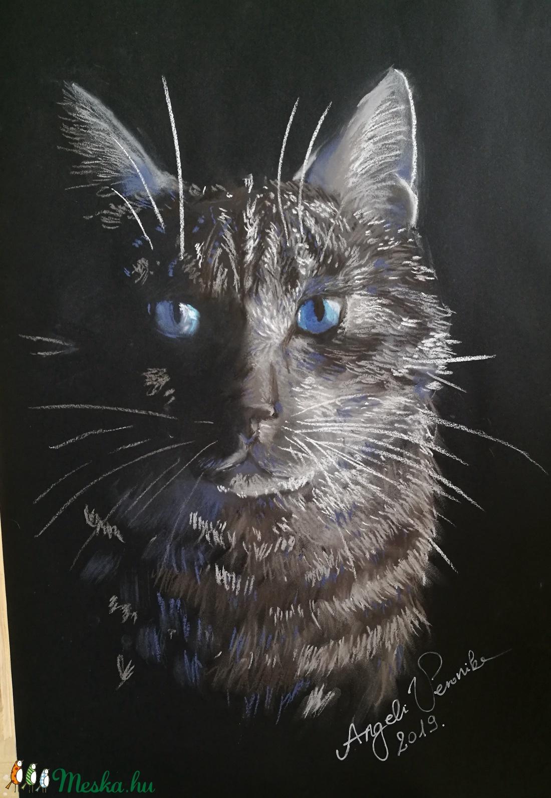 Igéző cicaszemek, pasztell macska portré (vercs90) - Meska.hu