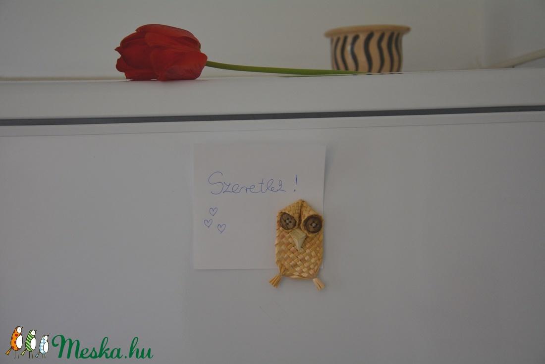 Bagoly hűtőmágnes (Veronikaesdora) - Meska.hu