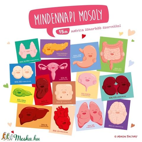 Boldog Szervek - átfogó matrica csomag / gyógyításra / szív, lép, gyomor, tüdő, agy, pajzsmirigy, méh, here, epe, máj  - Meska.hu