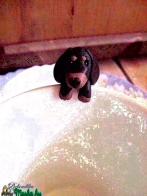 Tacskó kutya teafiltertartó (Belundika) - Meska.hu