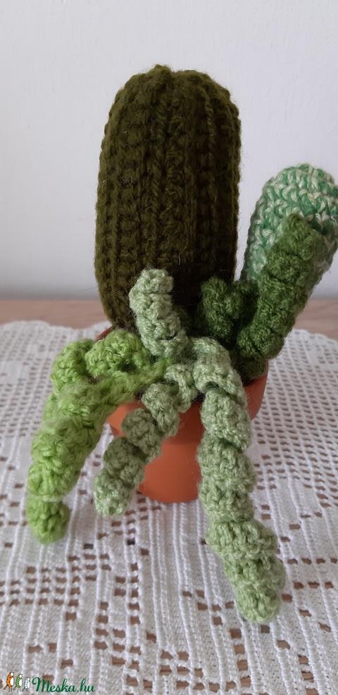 Kaktuszok cserépben, világos zöld pozsgással (designbybercica) - Meska.hu