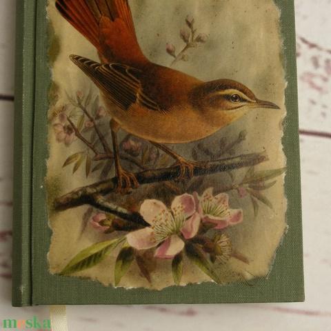Madaras napló, kisméretű kézzel fűzött üres könyv, jegyzetelő. Zöld vászon borító, üres lapok. Régies, vintage stílus - Meska.hu