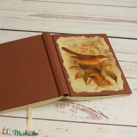 Madaras napló, kisméretű kézzel fűzött üres könyv, jegyzetelő. Barna vászon borító, üres lapok. Régies, vintage stílus - Meska.hu