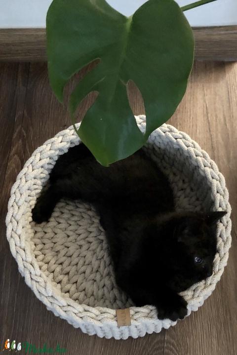 Macska, kutya fekhely bézs színben (fonalkod) - Meska.hu