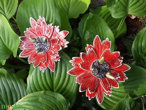 ,Piros Egzotikus Virágom