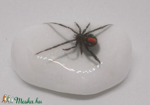 PÓKos kavics, kavicsok - pók, skorpió, tücsök, bogár, rovar - Meska.hu