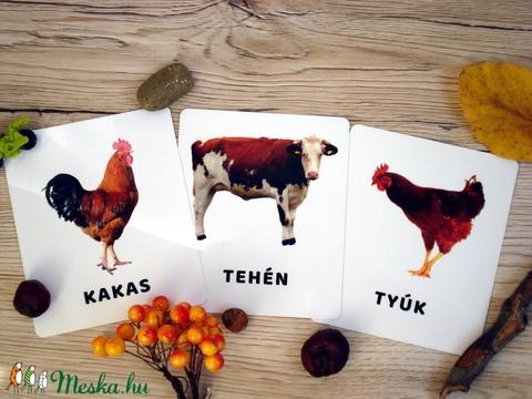 Tanulókártya- Házi állatok (miniPAKLI) - Meska.hu