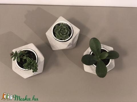 Beton cserép, ötszögletű, geometrikus, beton kaspó, kövirózsa, dekor, lakberendezés, design (bonniesweddingart) - Meska.hu
